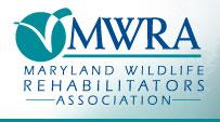 MWRA_logo